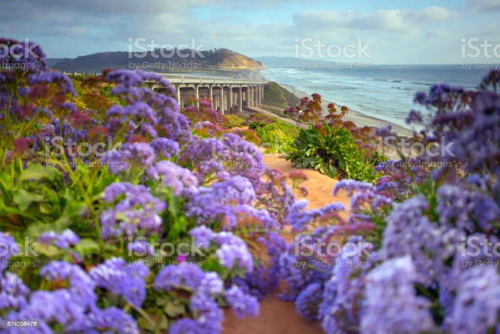 Del Mar California stock photo