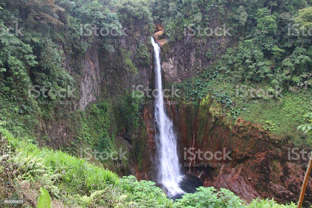 Catarata Del Toro In Costa Rica royalty-free stock photo