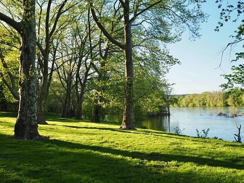 Scenic river bank of Delaware River, horizontal. OLYMPUS DIGITAL CAMERA