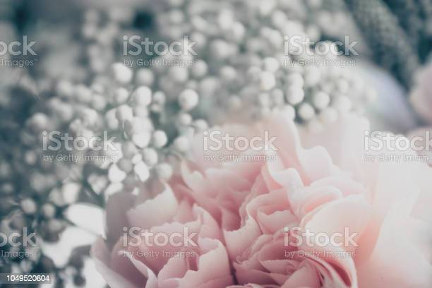 Delicate flower picture id1049520604?b=1&k=6&m=1049520604&s=612x612&h=6qh9hn3dlez72bcbyvomcqrevdspxxzkoziwcgsvup0=