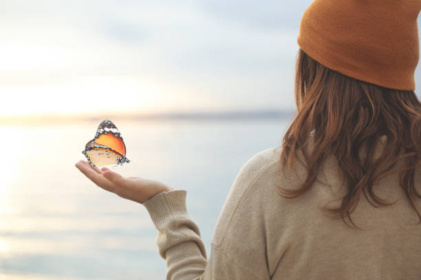 delicate moment  between a butterfly and a woman stock photo