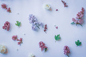istock delicate spring flowers on white background. Flat lay, top view 1047550284