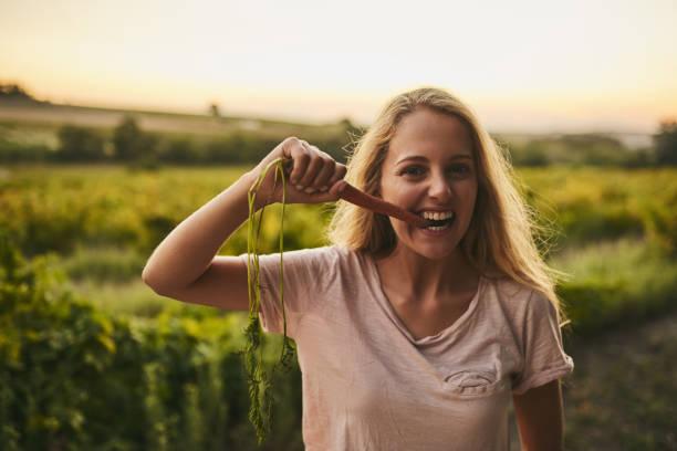 köstliche und nahrhafte - karotten gesund stock-fotos und bilder