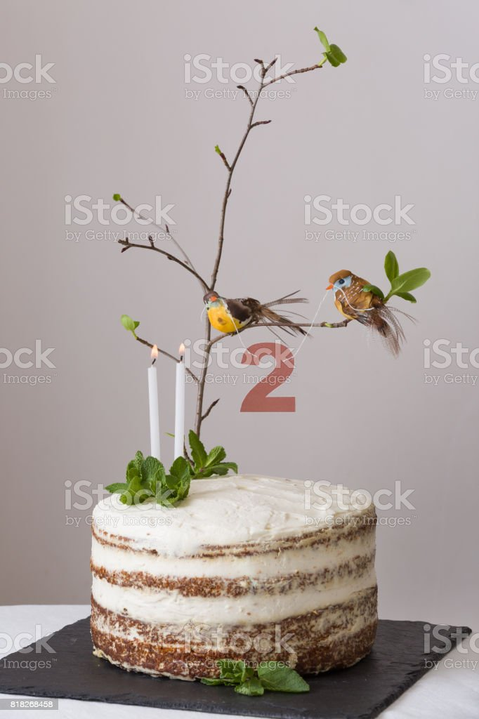 Stupendous Delicious Birthday Cake With Branch Of A Tree Birds Candles And Personalised Birthday Cards Cominlily Jamesorg
