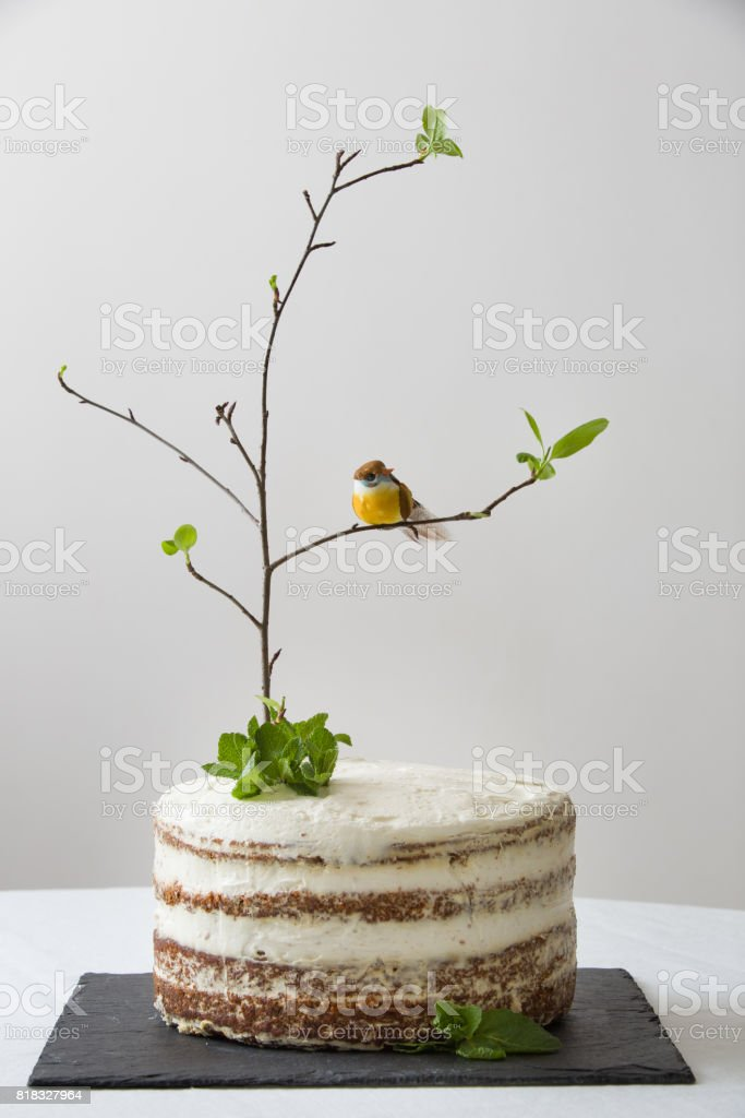 Delicious Birthday Cake With Branch Of A Tree Birds Candles And