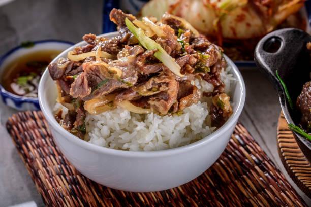 おいしい焼肉、漬け醤油とニンニク、生姜、ご飯の上 - 丼物 ストックフォトと画像