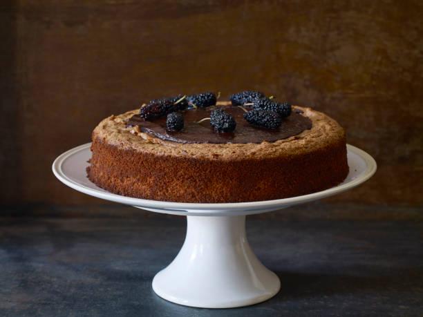 köstliche kuchen - schokoladen käsekuchen törtchen stock-fotos und bilder