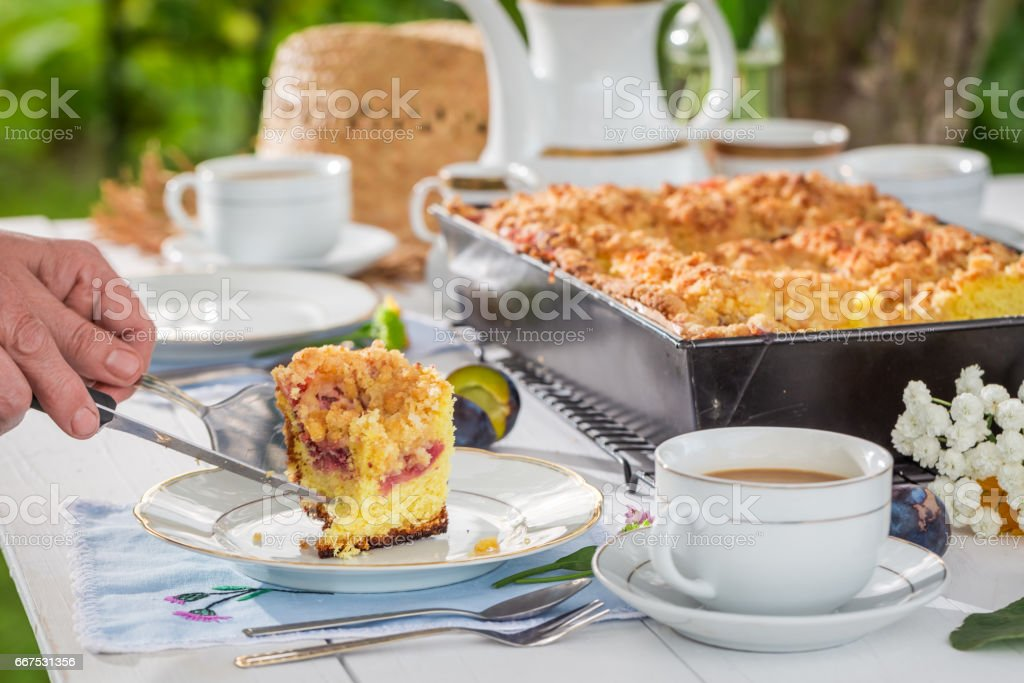 Delicious cake with plum served with coffee in sunny day foto stock royalty-free