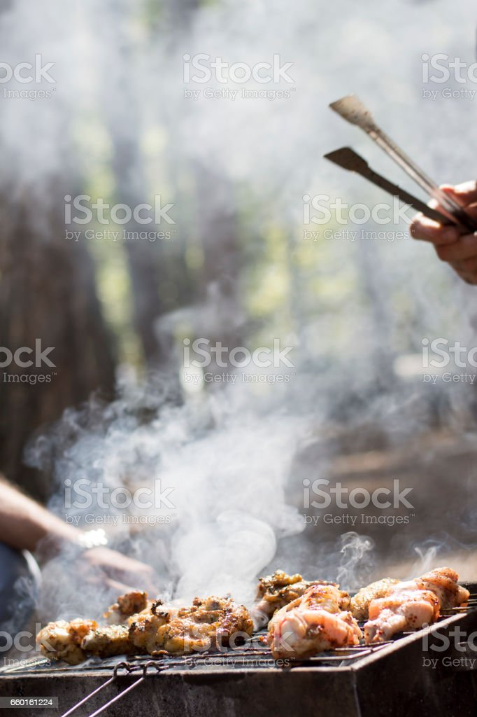 Delicious chicken wings on a barbecue at picnic stock photo