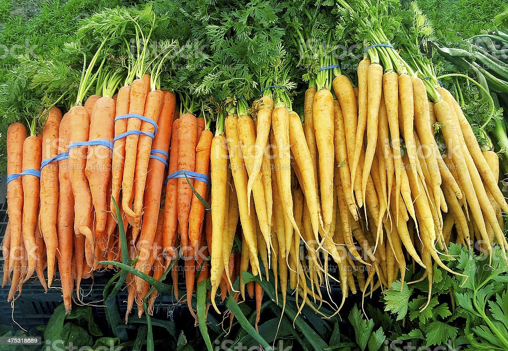 Delicious farm fresh carrots in bunches on a farmers market. royalty-free stock photo