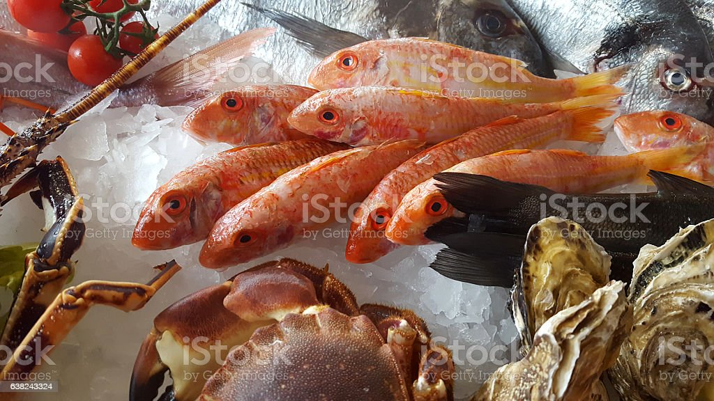 delicious fresh fish on ice - Lobster, porgy, bream, oyster stock photo