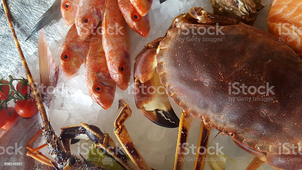 delicious fresh fish on ice - Lobster, porgy, dentex, crab stock photo