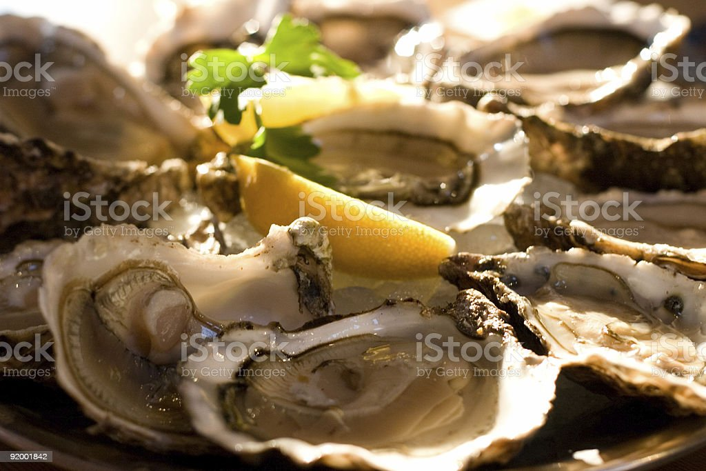 Delicious Fresh Oysters stock photo