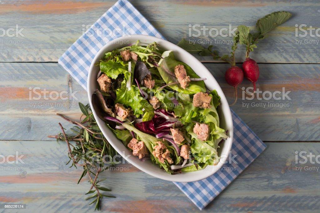 Delicious Fresh Tuna Salad foto de stock royalty-free