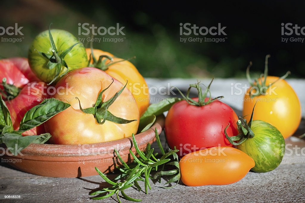 Delicious Heirlooms royalty-free stock photo