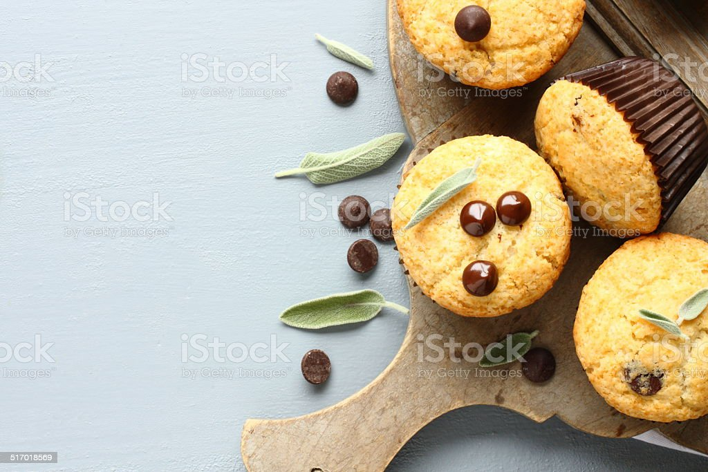 Delicious homemade gluten free muffins with chocolate drops stock photo