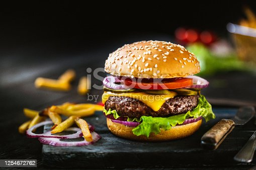 Delicious homemade hamburger and french fries