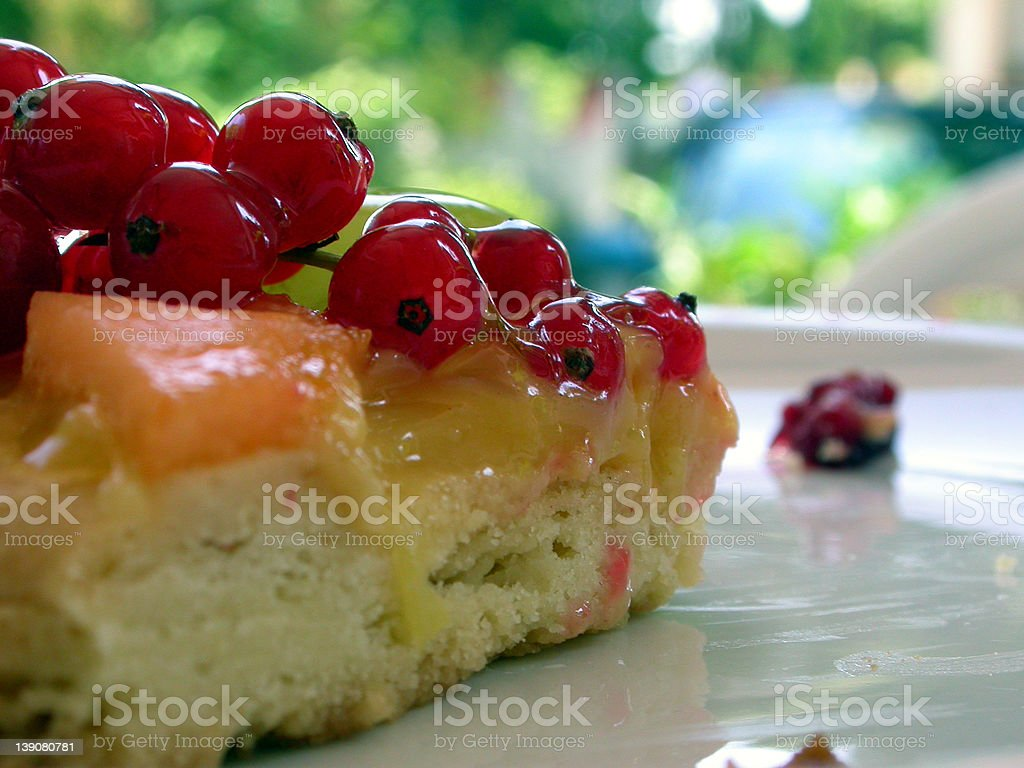 A delicious piece of cake royalty-free stock photo
