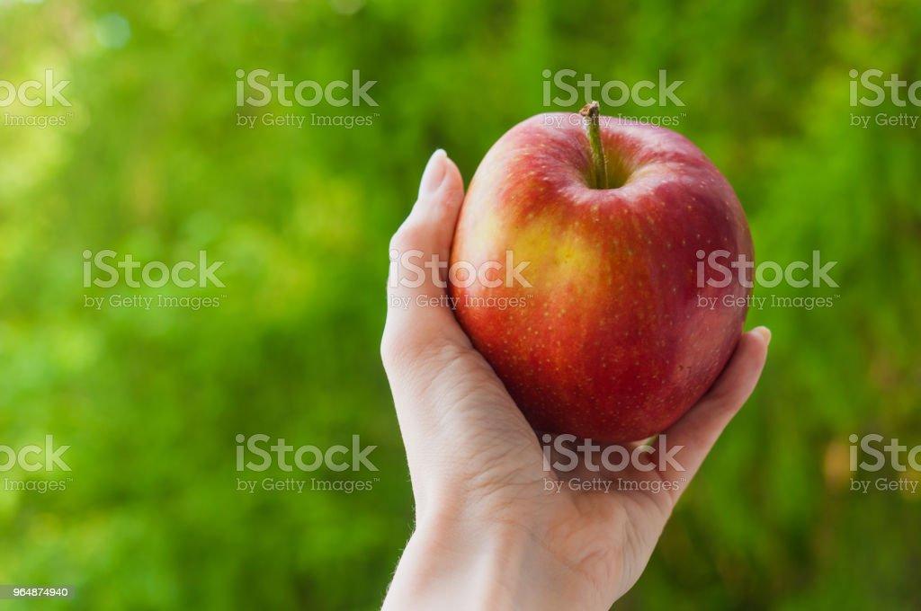 在綠色的夏天背景下, 一個女人的手美味的紅蘋果 - 免版稅凍結的圖庫照片