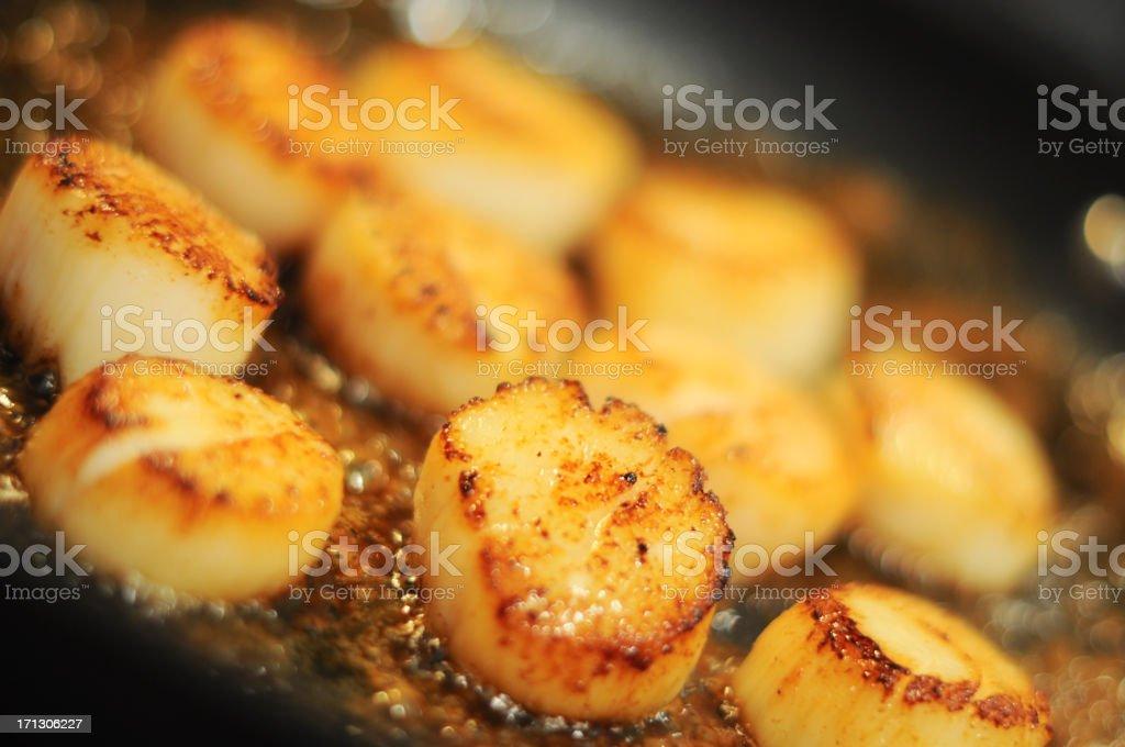 Delicious scallops stock photo