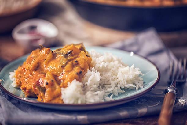 caseiro delicioso prato de curry de frango com arroz - caril - fotografias e filmes do acervo