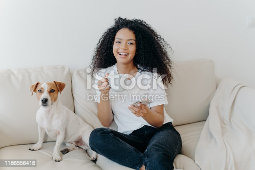483426960istockphoto Delighted dark skinned woman poses in modern apartment, sits on comfortable sofa with pet, drinks coffee, uses mobile phone for online communication, being in good mood, flipping news, uses app 1186556418