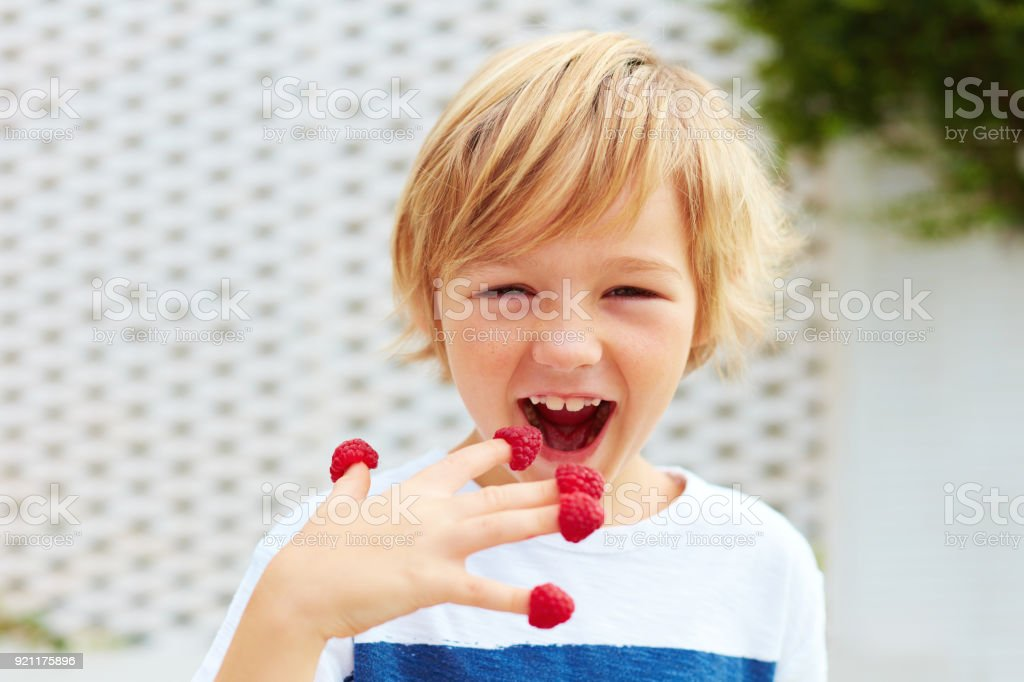 delighted kid, boy tasting ripe and fresh raspberries from his fingers stock photo