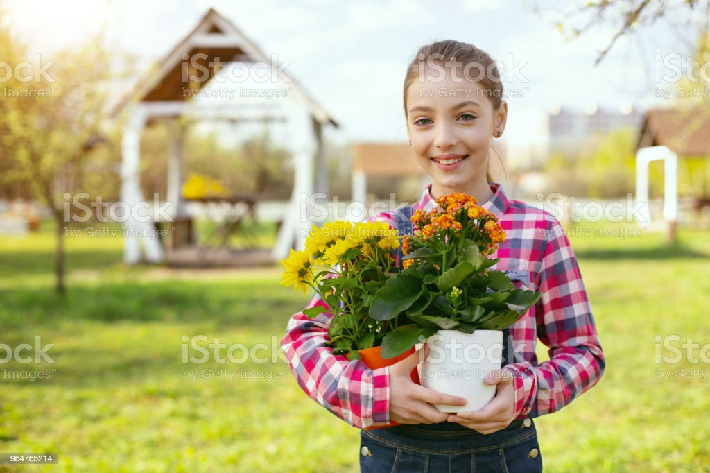 Delighted nice girl holding flower pots royalty-free stock photo
