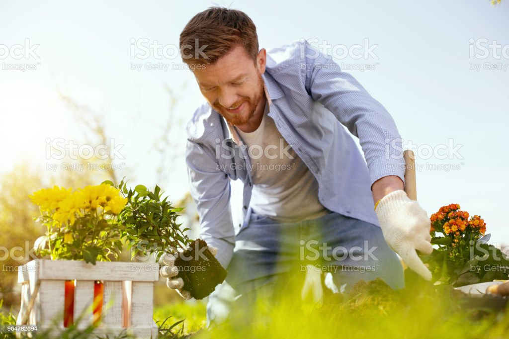 Delighted nice man smiling royalty-free stock photo