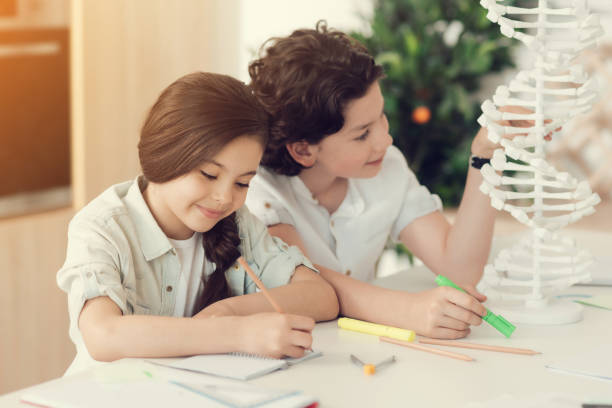 Delighted positive children studying together Pleasant cooperation. Delighted nice positive children smiling and looking at the DNA model while studying together dna purification stock pictures, royalty-free photos & images