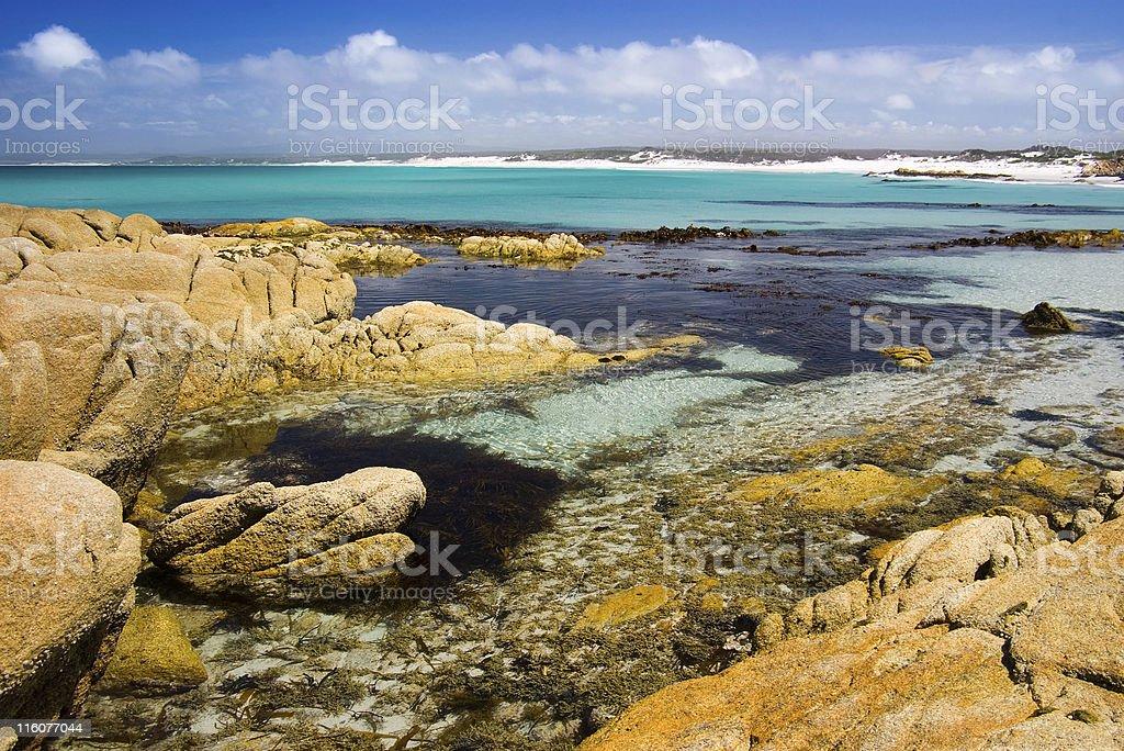 Delightful clear coastal rock pools, Bay of Fires, Tasmania, Australia stock photo