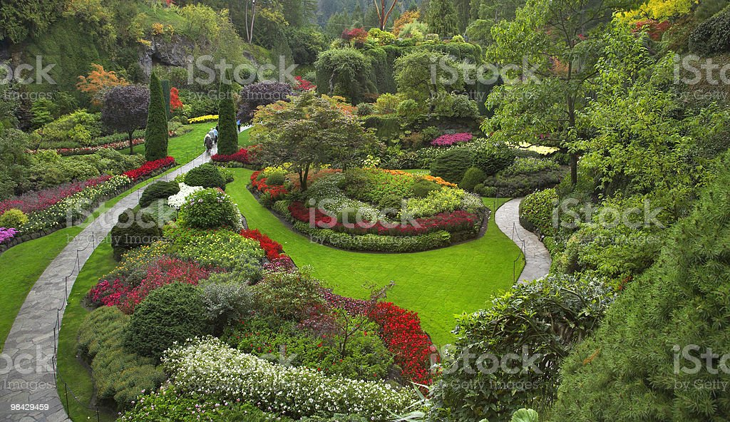 Delightful garden. royalty-free stock photo