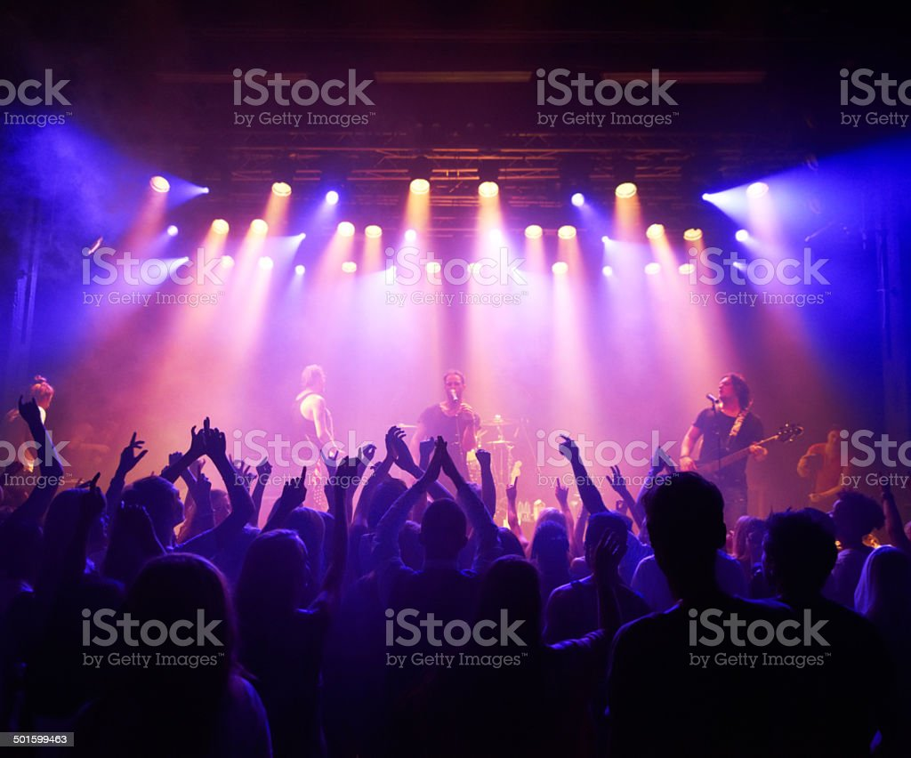 Shot of a large crowd at a music...