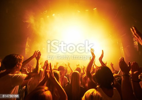 Rear-view of a crowd cheering at a concert- This concept was created for the sole purpose of this photo shoot, featuring 300 models and 3 live bands. All people in this shoot are model released