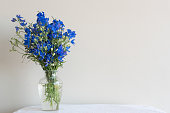 Delphiniums in glass vase on white table with tablecloth against neutral wall background (selective focus)