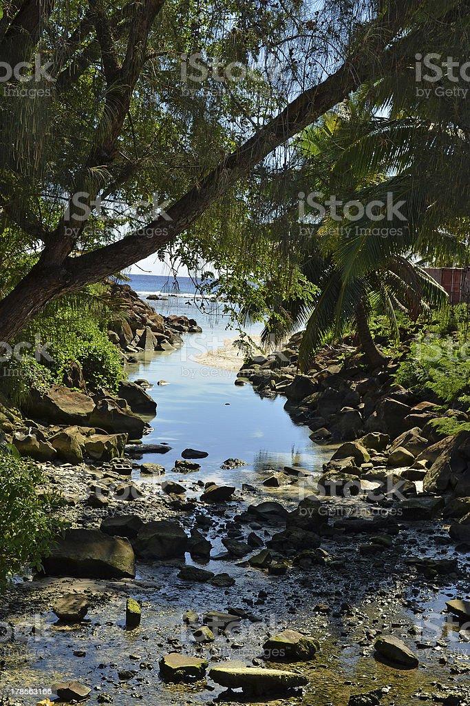 Delta of Cook Islands Rarotonga's River royalty-free stock photo