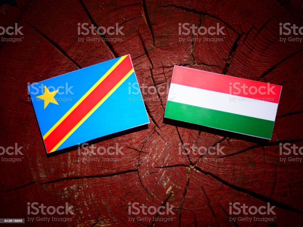 Democratic Republic of the Congo flag with Hungarian flag on a tree stump isolated stock photo