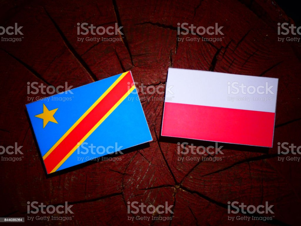 Democratic Republic of the Congo flag with Polish flag on a tree stump isolated stock photo