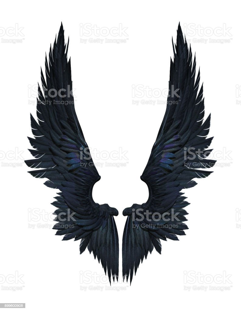 Demon Wings, Black Wing Plumage Isolated on White Background stock photo
