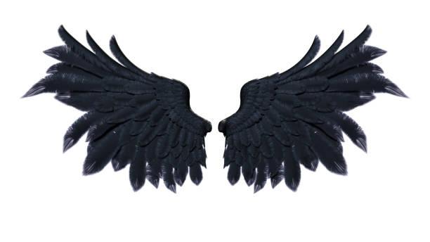 Demon vleugels foto