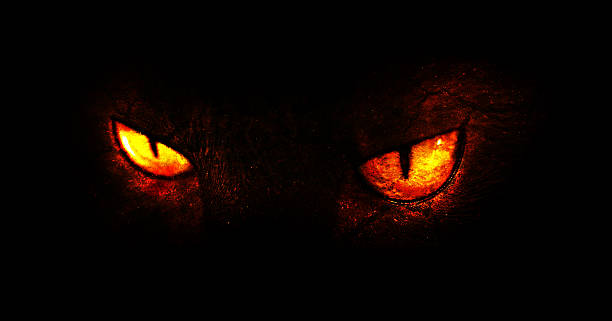 Demonic eyes An illustration of burning demonic eyes. animal eye stock pictures, royalty-free photos & images