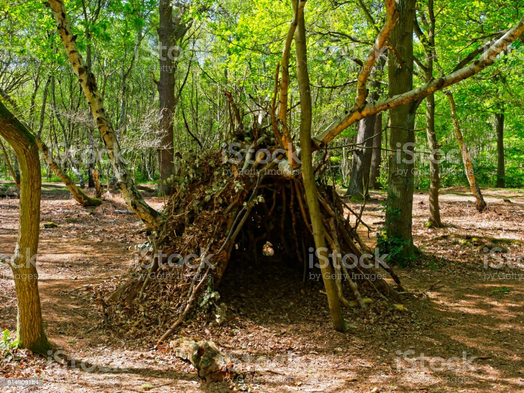 A den in Sherwood Forest stock photo