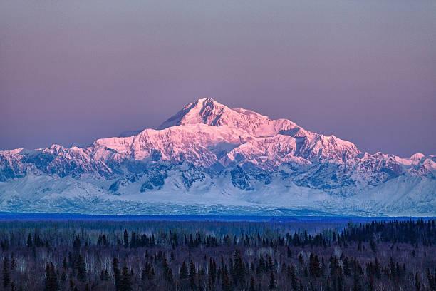 denali at sunrise - denali national park bildbanksfoton och bilder