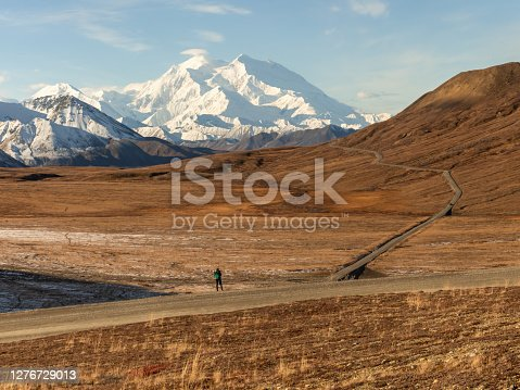 Denali Mountain in Autumn With Viewer