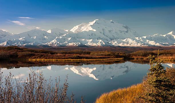 denali mountain in fall reflected in wonder lake, alaska - denali national park bildbanksfoton och bilder