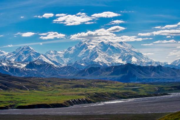 denali mountain - denali national park bildbanksfoton och bilder