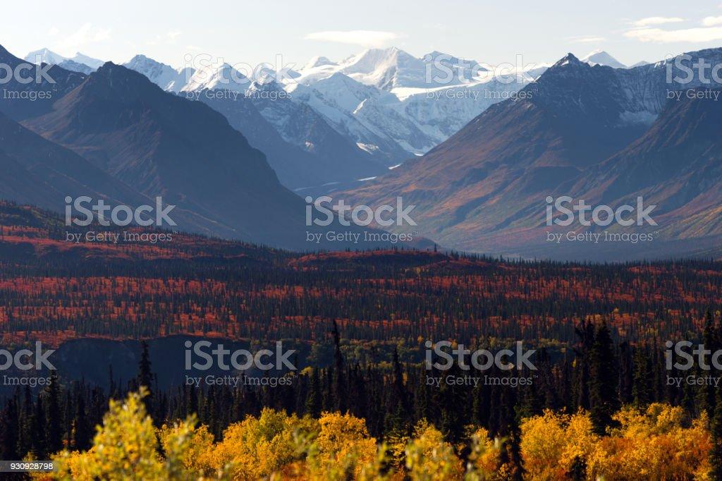 Denali Range Autumn Color Alaska Wilderness Winter Season stock photo