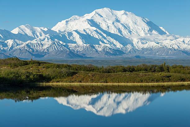denali reflected in a kettle pond, denali national park, alaska. - denali national park bildbanksfoton och bilder