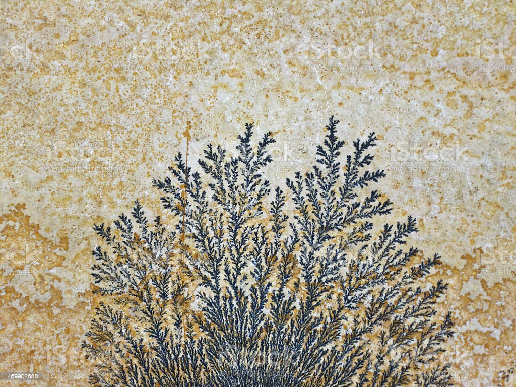 dendrite on stone plate stock photo