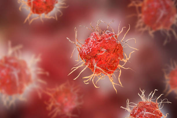 Dendritic cell, antigen-presenting immune cell stock photo